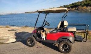 Golf cart, and Corgie